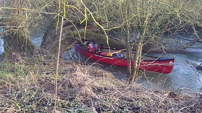 Squeezing a canoe through trees on the Swift Ditch, Abingdon
