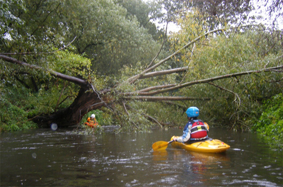 Kayakers on the River Wandle