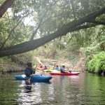 Kayaking the River Wandle in south London